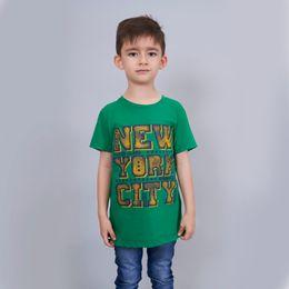 02005303003301047-verde-frontal