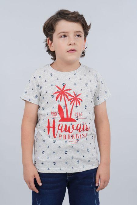 Camiseta para Niño Color Gris Ref: 030172 - CCU - Talla: 6